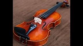 Histoire de la lutherie: un violon.
